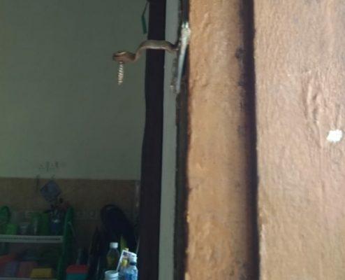 Pintu samping rumah warga yang diduga dicongkel maling di siang bolong